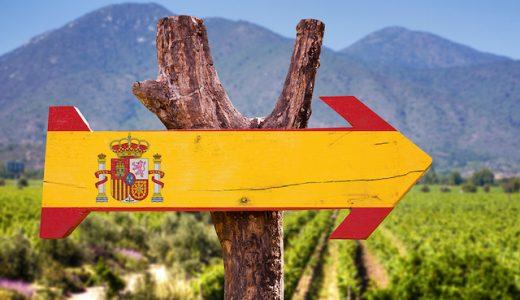 【激うま】おすすめスペイン産ワイン8選!値段や特徴、選び方を徹底解説!